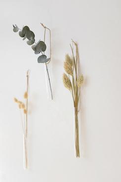 soliflore fleuri