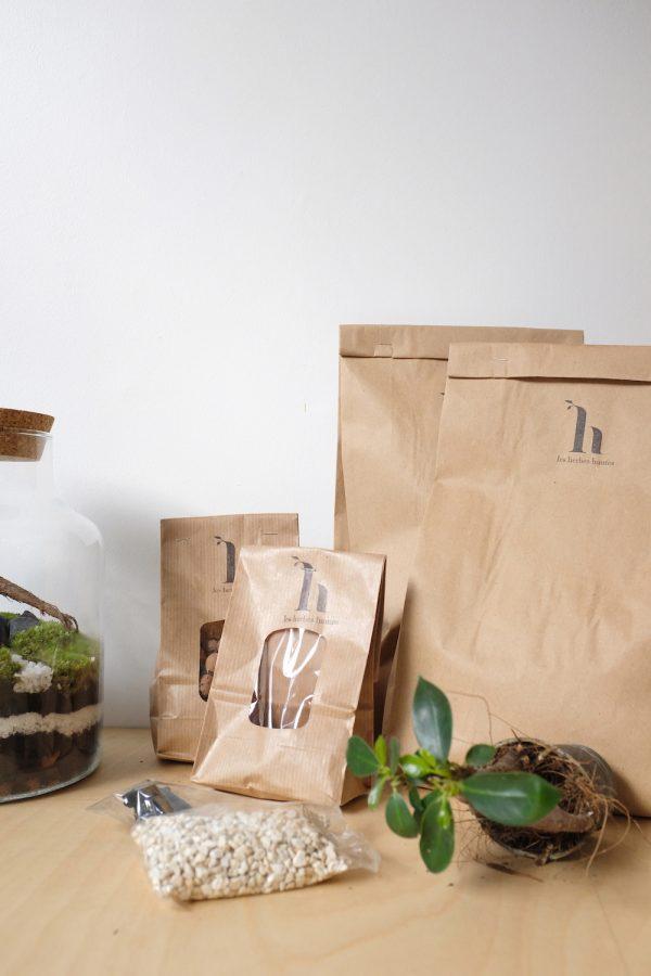 Kit DIY terrarium